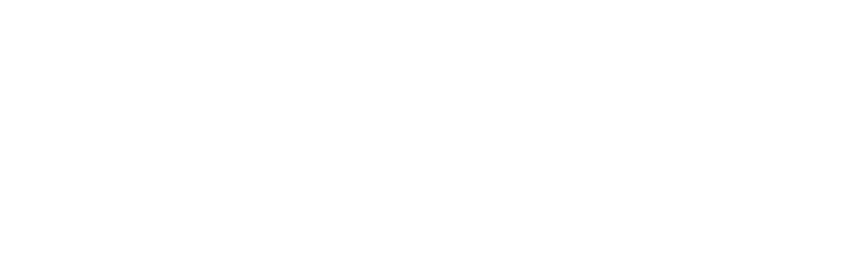 SPECIALIZED TECHNIQUE SUPPORT